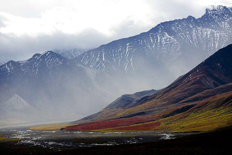 File:Alaska-tundra.jpg