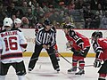 Albany Devils vs. Portland Pirates - December 28, 2013 (11622800146).jpg