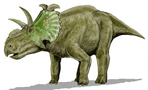 Oldman Formation - Albertaceratops