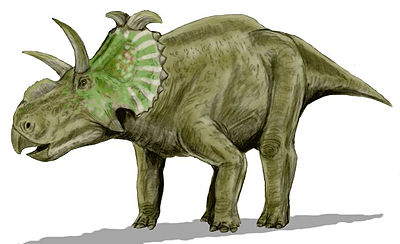 Albertaceratops BW.jpg