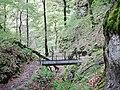 Albtraufgänger, Hossinger Leiter 945 m ü. NN - panoramio (3).jpg