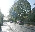 Altar Drive - looking towards Heaton Park Drive - geograph.org.uk - 2654641.jpg