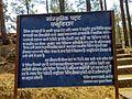 Ancient Cave Paintings at Lakhudiyar, Almora District, Uttarakhand India - 5.jpeg