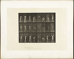 Animal locomotion. Plate 499 (Boston Public Library).jpg