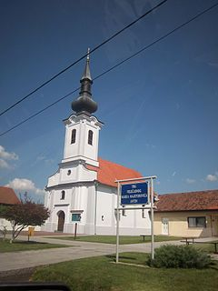 Antin, Croatia Village in Vukovar-Syrmia, Croatia