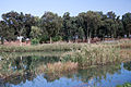 Aphek Yarkon park 271012 01.jpg