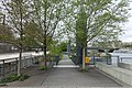 Archipel des Berges de la Seine - Niki de Saint-Phalle @ Parc Rives de Seine @ Paris (33620120412).jpg