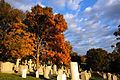 Arlington National Cemetery in Arlington, Va., is seen Nov. 2, 2013 131102-G-ZX620-029.jpg