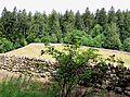 Arzier, Chartreuse d'Oujon et maison basse attenante (vue d'en haut).jpg