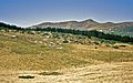 Auf dem Plateau de Bouy 1998 (Ct170830).jpg