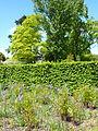 Auteuil-Fern garden 09.JPG
