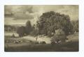 Autumn Oaks, George Innes (NYPL b12647398-70509).tiff