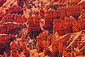 Autumn colours in SW Utah - Cedar Breaks National Monument - from the 10,460 foot rim (15630195376).jpg