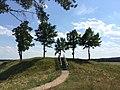 Bėčionių piliakalnis - panoramio (1).jpg