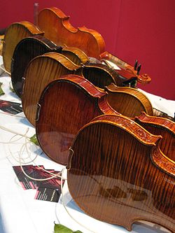 Image illustrative de l'article Violin Phase