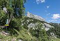 Bad Mitterndorf Tauplitzalm Sturzhahn NSGStmk 017.jpg