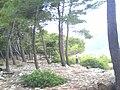 Badija02557.JPG