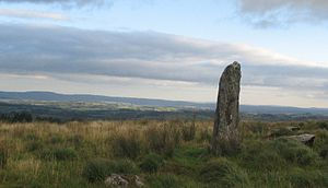 Menhir - Large menhir located between Millstreet and Ballinagree, County Cork, Ireland