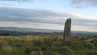 Menhir - Large menhir located between Millstreet and Ballinagree, County Cork, Ireland