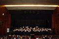 Banda de Música de Loureiro em concerto.jpg