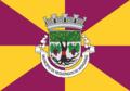 Bandeira MRM.png