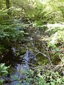 Bandiat Abjat-sur-Bandiat nord Maumont amont.jpg