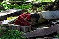 Bangalore, India (36461188).jpg