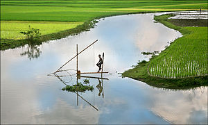 Fisheries and climate change - Image: Bangladesh Fishing 2006