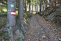 Bannwaldweg 8 in Poertschach Markierung 29112013 246.jpg