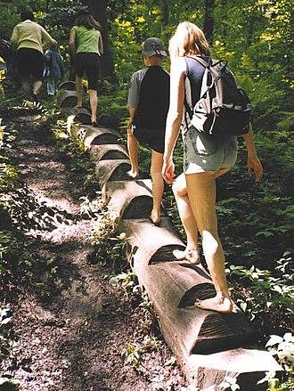 Münden Nature Park - Nienhagen barefoot path in the Münden Nature Park