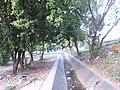 Barrio el socorro - panoramio (3).jpg