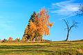 Barvy podzimu nad Křemenicí.jpg