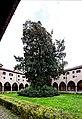 Basilica di Sant´ Antonio di Padova jm56134.jpg