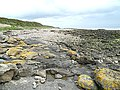 Beach West of Gutcher's Isle - geograph.org.uk - 1392464.jpg