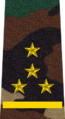 Belarus MIA—07 Captain rank insignia (Camouflage).png