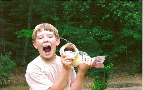 Harry and his Fish