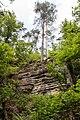 Berdorf (LU), Aesbachtal -- 2015 -- 6346.jpg