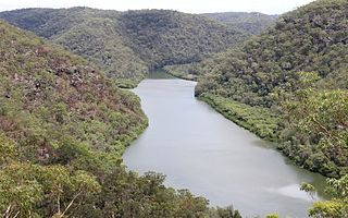 Berowra Valley National Park Protected area in New South Wales, Australia