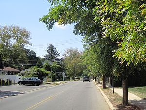 Berrien City, New Jersey - Looking down Alexander Road