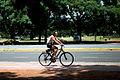 Bicis, rollers y skate en Palermo (8392553564).jpg