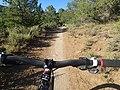 Biking Horse Gulch (15091480176).jpg