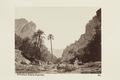 """Bild från familjen von Hallwyls resa genom Algeriet och Tunisien, 1889-1890. """"El Kantara - Hallwylska museet - 91877.tif"""