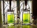Bioreaktor quer2.jpg
