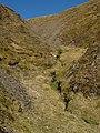 Birnock Cloves - geograph.org.uk - 386036.jpg