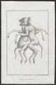 Bison americanus - siamese tweeling - 1700-1880 - Print - Iconographia Zoologica - Special Collections University of Amsterdam - UBA01 IZ21200205.tif