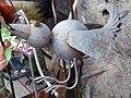 Blechvogel - panoramio.jpg