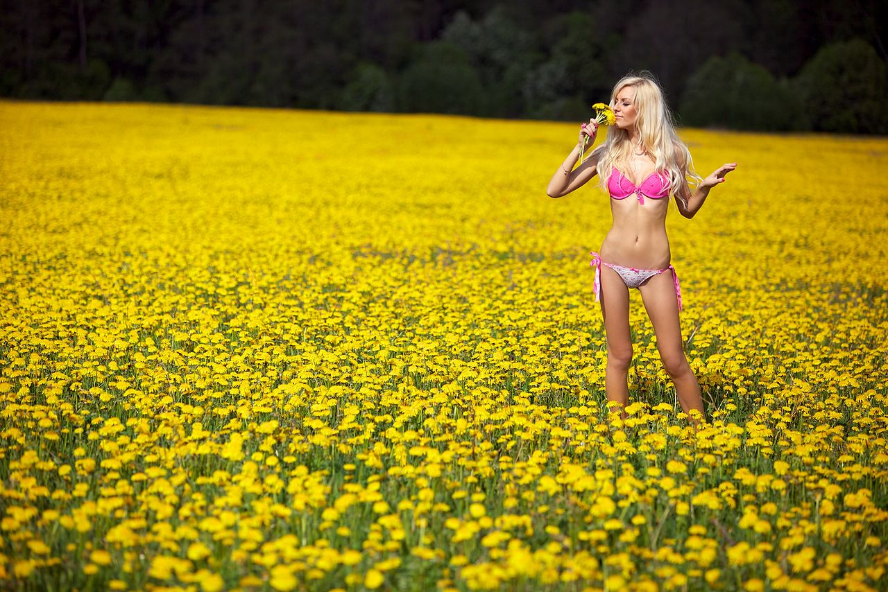 Fileblond woman in a pink underwear on a field with yellow flowers fileblond woman in a pink underwear on a field with yellow flowers 02g mightylinksfo Images