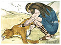 Book of Judges Chapter 14-3 (Bible Illustrations by Sweet Media).jpg