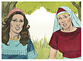 Book of Ruth Chapter 1-6 (Bible Illustrations by Sweet Media).jpg