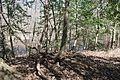 Boones Mounds, Arkansas DSC 0896 (8565793238).jpg